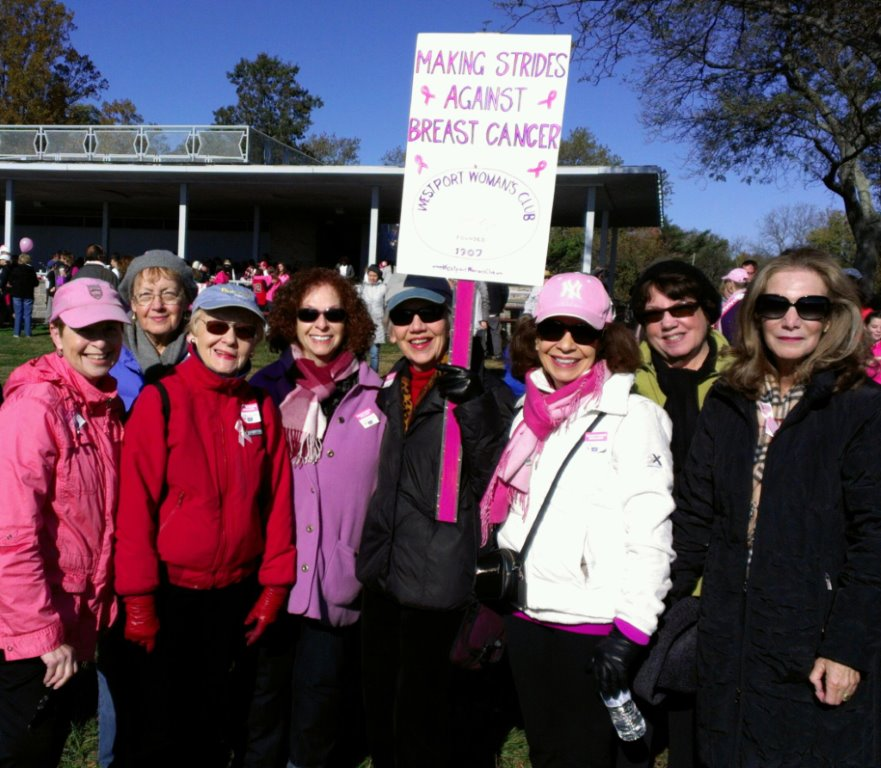Making Strides Against Breast Cancer - 2013 (1)