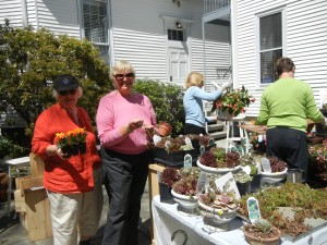 Janette Duchnicki and Linda Amos getting bright annuals ready for the Plant Sale